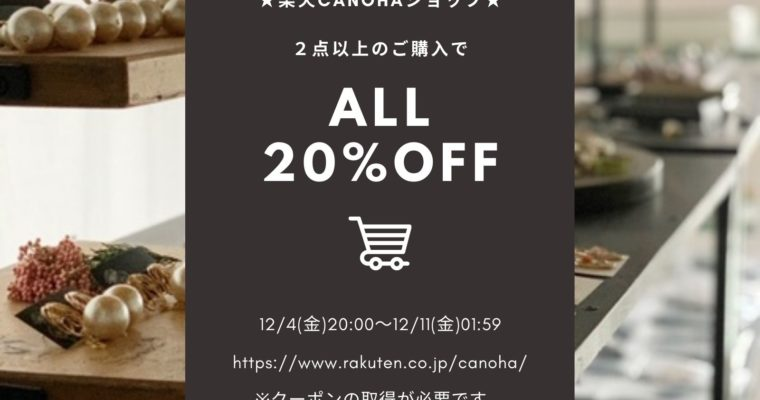 Buy 2 more, 20% discount on Rakuten canoha.